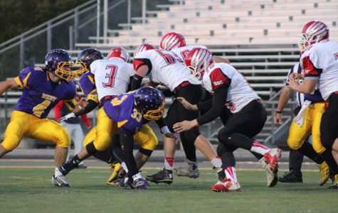 Football Stat Sheet: Bellevue West vs. South Sioux City