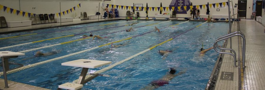 Swimming vs. Diving rivalry makes waves at West