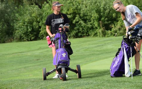 Loyselle, Mullendore wrap up golf season with state appearance