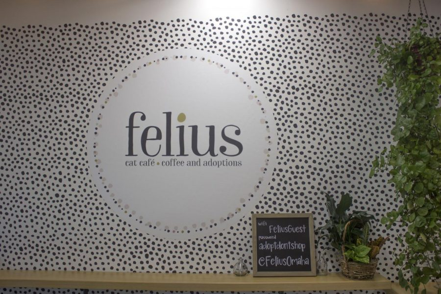 Logo for the Felius Cat Cafe in Downtown Omaha