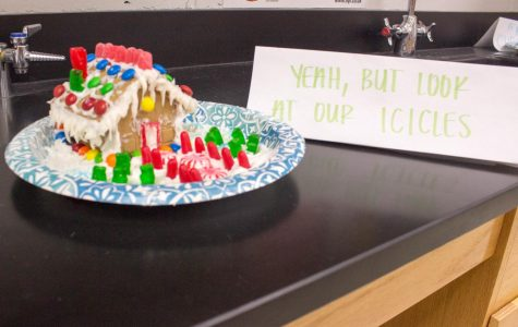 Science National Honor Society's Annual Gingerbread Decorating Contest: Photo Essay