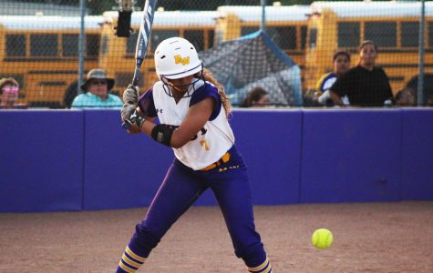 """Softball maintains """"love for the game"""" despite losing record"""