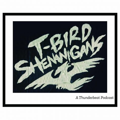T-Bird Shenanigans S2:E6: Interview Sessions 1: Ayden Stiner, Furry