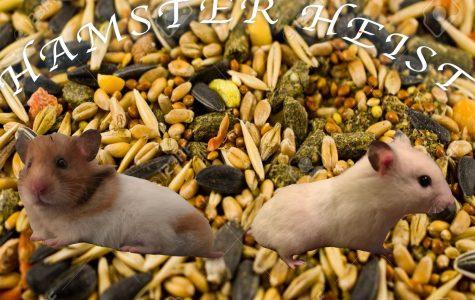Hamster Heist